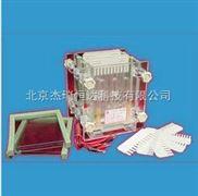 雙板夾芯式垂直電泳儀(槽)(小號)