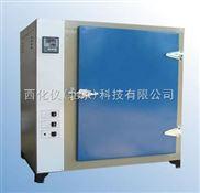 XZ工业烘箱 型号:XZDR9-M243837