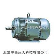 稀土永磁三相同步电动机(中西)