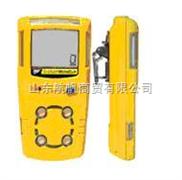 现货供应BW可燃气体检测仪,特价销售