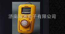 手持式煤气泄露检测仪