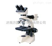 现货XJX-200双目金相显微镜
