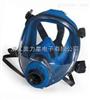 HEAD1812HEAD1812 SF6专用全面罩防毒面具