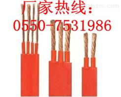 YFGB(扁)电缆供应-天仪牌