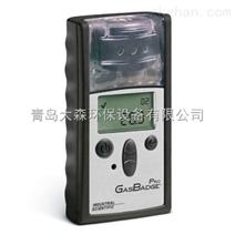 GB Pro便携式单一气体检测仪