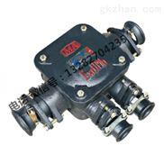 BHD2-200/1140-4T-低压矿用隔爆型接线盒