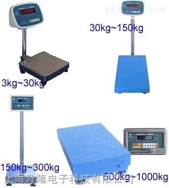 120公斤手提式电子秤
