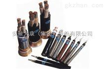 安徽CEPJR/SC电缆生产厂家 报价 质量保证 船用电缆
