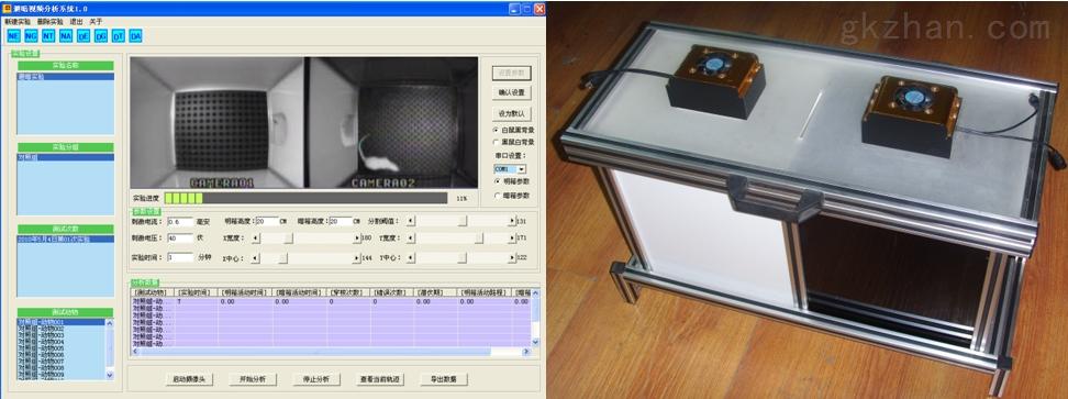 避暗實驗視頻分析係統