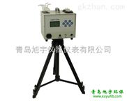 旭宇-XY-2600双路烟气采样器