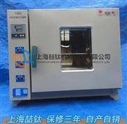 101Y-1鼓风干燥箱