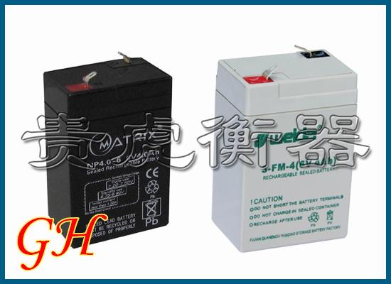 > 电子秤-地磅专用蓄电池,蓄电池充电器