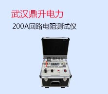 武汉鼎升电力自动化有限责任公司