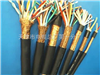 IA-DJYJPVP22 本安计算机电缆