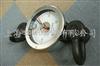SG河北300公斤表盘式测力仪