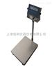60kg电子立说杆秤带通讯接口